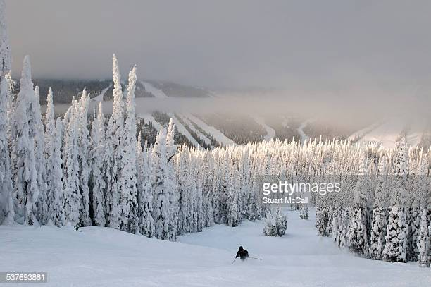 downhill skier takes the last run of the day - kamloops stock pictures, royalty-free photos & images