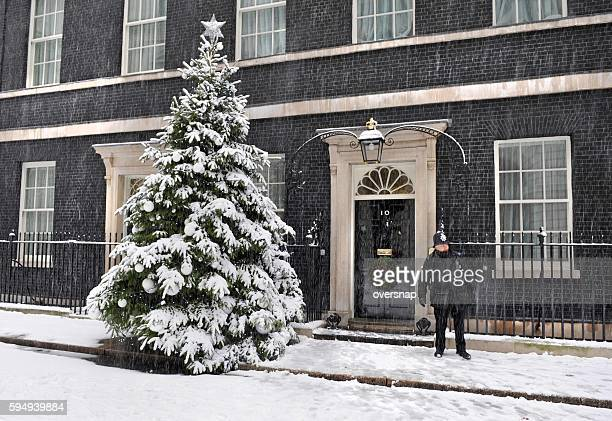 Downing Street snowstorm