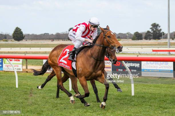 Cape Richards after winning the Ladbrokes Protest Payout BM64 Handicap at Sale Racecourse on August 16 2018 in Sale Australia