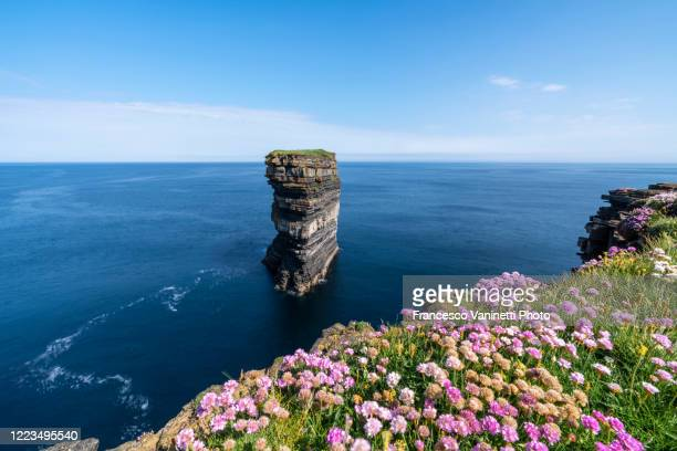 downpatrick head, ireland. - rock stock pictures, royalty-free photos & images