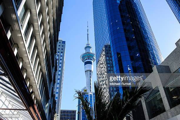 Downtown Auckland with its high rise buildings, Auckland, North Island, New Zealand, Pacific