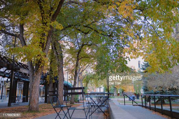 downtown calgary city park in autumn - calgary alberta stock pictures, royalty-free photos & images
