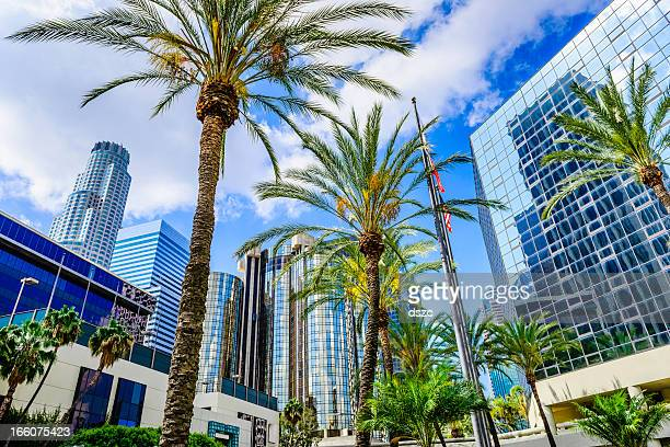 Downtown Los Angeles California skyline cityscape skyscrapers and palm trees
