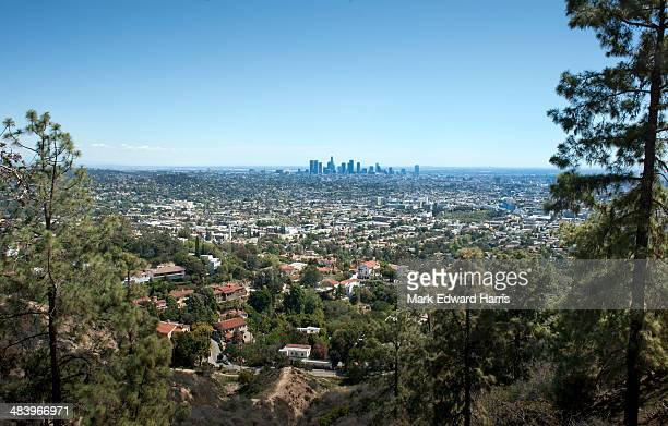 downtown los angeles from griffith park - griffith park stock pictures, royalty-free photos & images