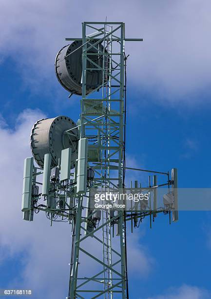 A downtown microwave and cell communications tower is viewed on December 12 in Hilo Hawaii Hawaii the largest of all the Hawaiian Islands at 4000...