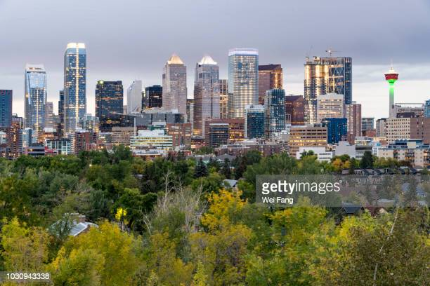 downtown night after the rain - calgary stock pictures, royalty-free photos & images