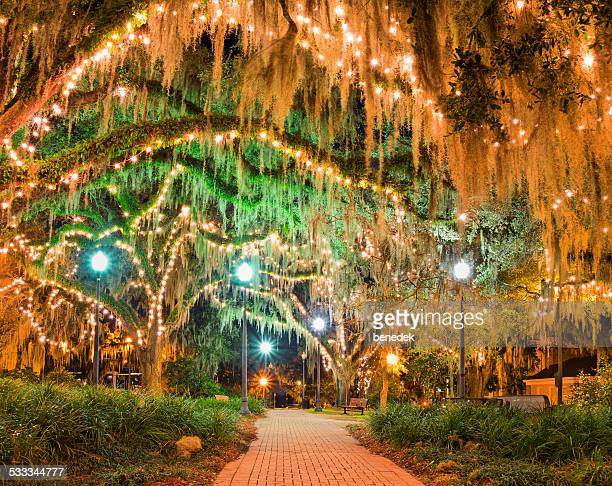 downtown park tallahassee florida - spanish moss stock pictures, royalty-free photos & images