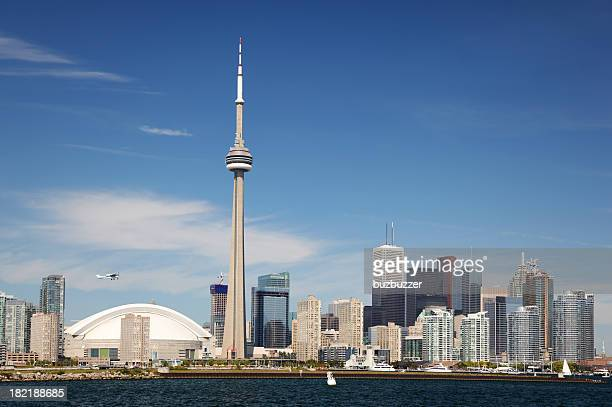 downtown toronto summer cityscape - cn tower stock pictures, royalty-free photos & images