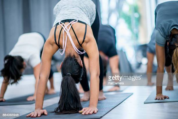 downward dog - yoga stock pictures, royalty-free photos & images