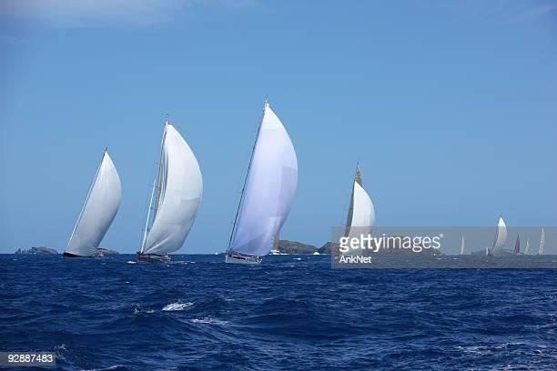 Downwind navegación con spinnakers en el mar azul.