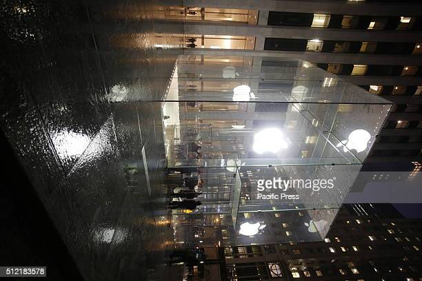 A dozen Apple aficionados and privacy activists braved cold rain and winds to stand in front of the Apple 5th Avenue store to encourage the company's...