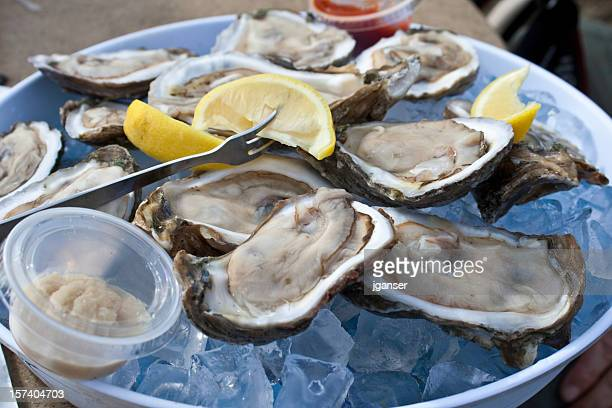 dozen raw oysters - oyster shell stock photos and pictures