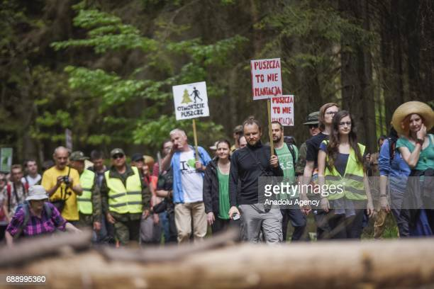 Dozens of ecologists attend a protest against the large scale logging at Bialowieza forest an Unesco natural world heritage site in Bialowieza Poland...