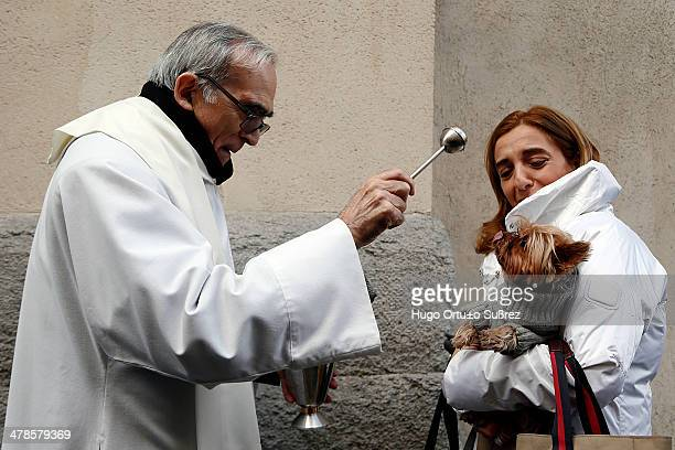 Dozens of people accompanied by pets celebrated the day of its patron, San Anton , with masses and blessings of animals at the Church of San Anton,...