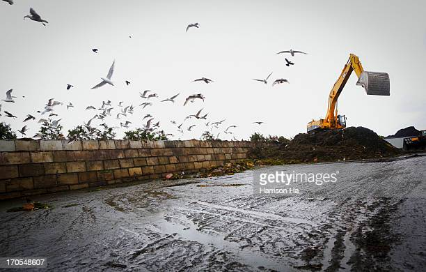 CONTENT] A dozer continuously crawls over the organic waste in order to speed up the decomposition process at the organic waste recycling facility in...