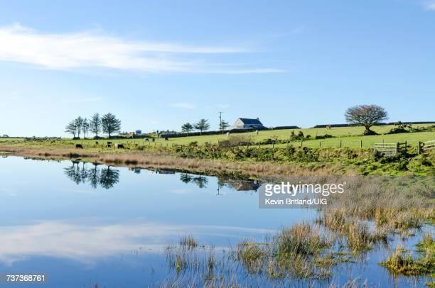 Dozmary Pool On Bodmin Moor In Cornwall, England