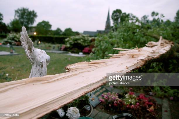 dpatop 16 May 2018 Germany Schwalmtal A fallen tree lying next to a destroyed angel figure ina garden The tornado has according to authorities a...