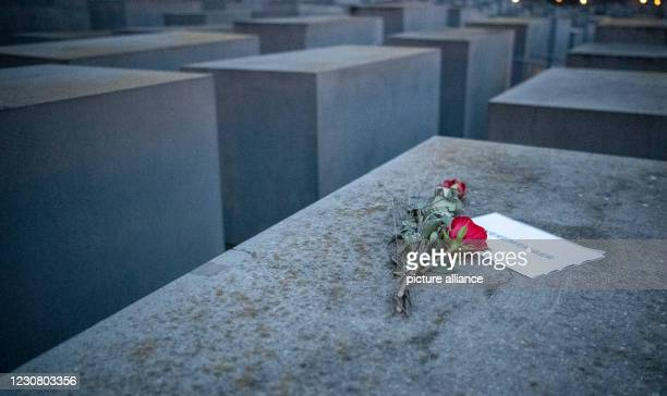 """Dpatop - 26 January 2021, Berlin: Roses lie with a note, with the inscription """"#weremeber"""" at the Holocaust Memorial. Holocaust Memorial Day will be..."""