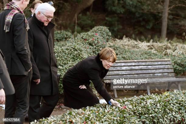 dpatop GermanPresident FrankWalter Steinmeier his wife Elke Buedenbender visit The East Gardens of the Imperial Palace in Tokyo Japan 06 February...