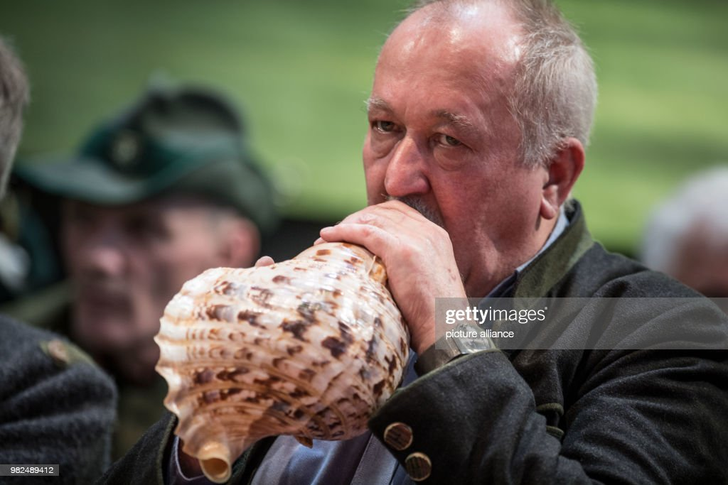 German Championship of Stag-Calling : News Photo