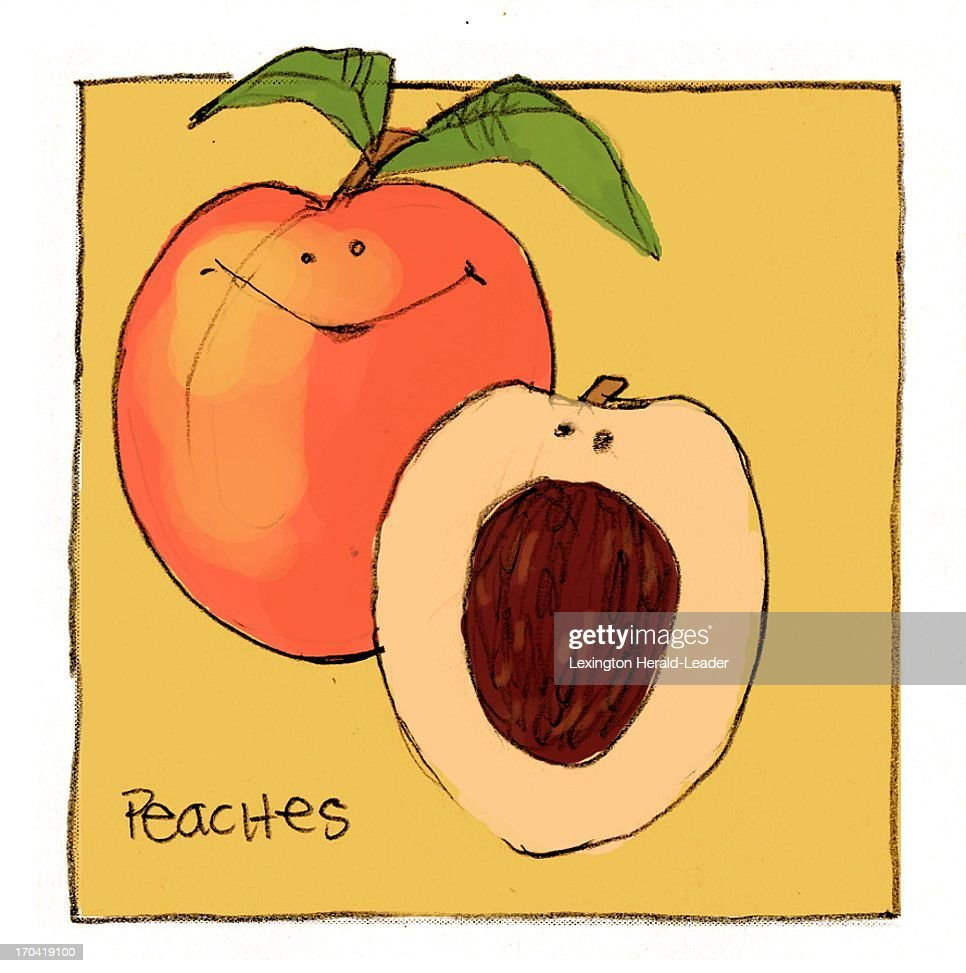 USA - 2013 300 dpi Chris Ware illustration of peaches.