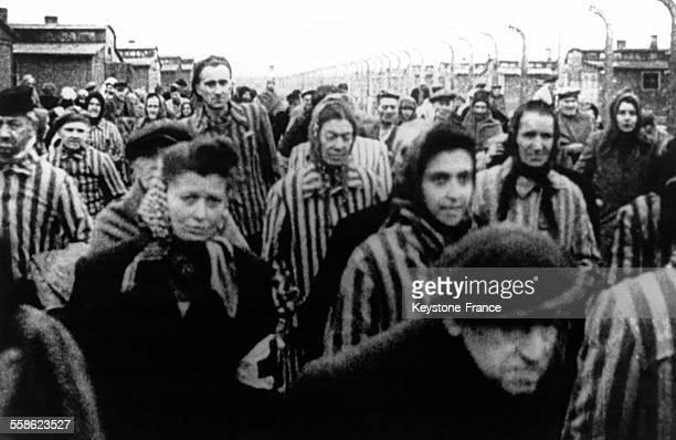 Déportés lors de la libération du camp de concentration d'Auswitchz Birkenau, en janvier 1945, Auschwitz, Pologne.