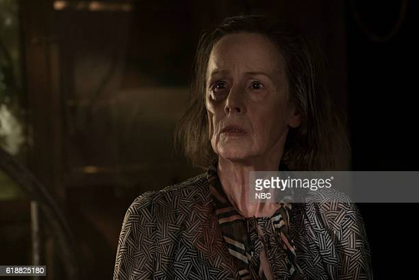 THE BLACKLIST 'Dr Adrian Shaw Conclusion' Episode 408 Pictured Susan Blommaert as Mr Kaplan