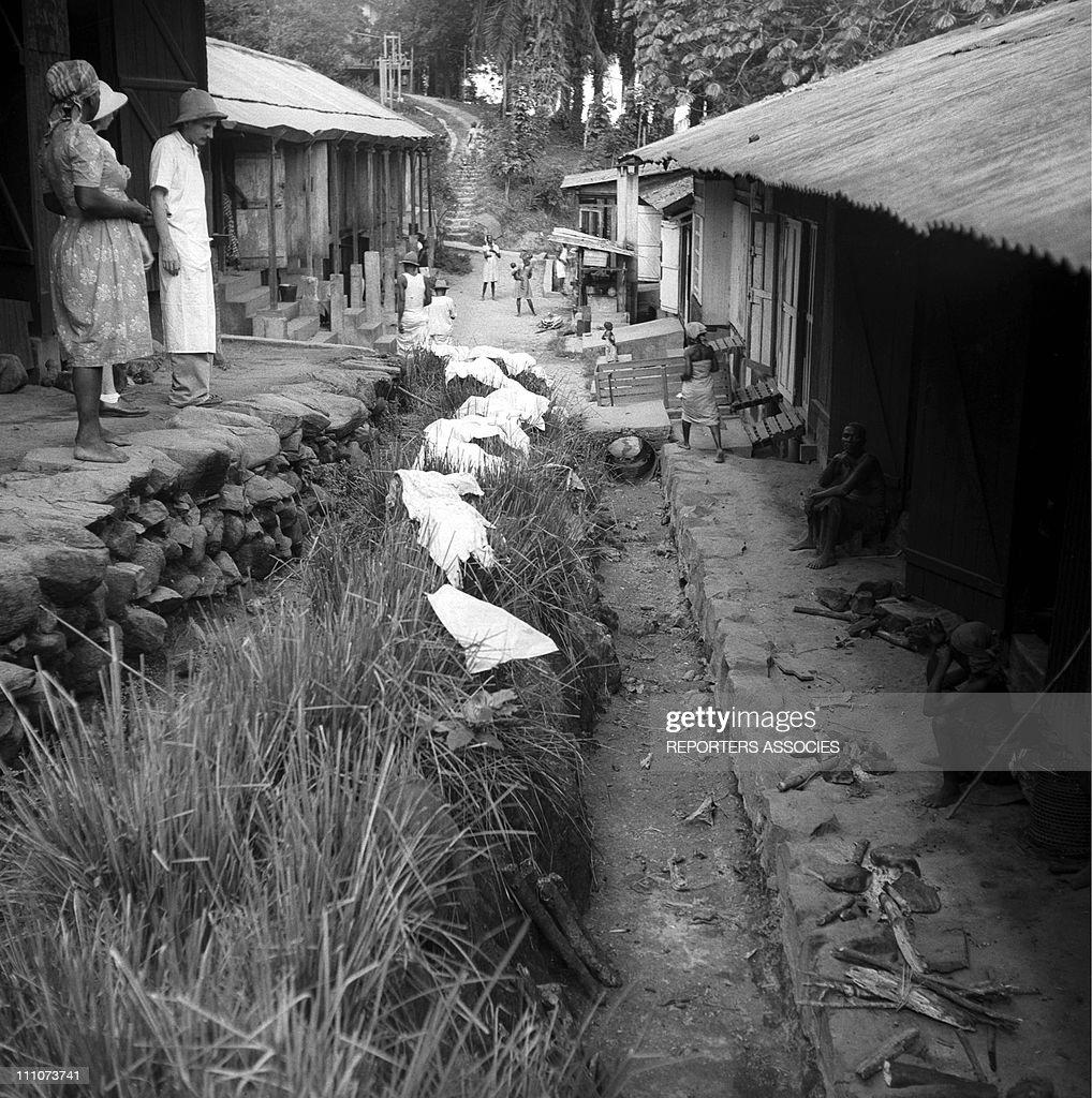Dr. Albert Schweitzer And His Hospital In Lambarene, Gabon In 1953. : Photo d'actualité