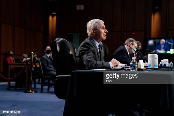Dr. Anthony Fauci, Director at the National Institute Of Allergy and Infectious Diseases during a hearing, with the Senate Committee on Health,...