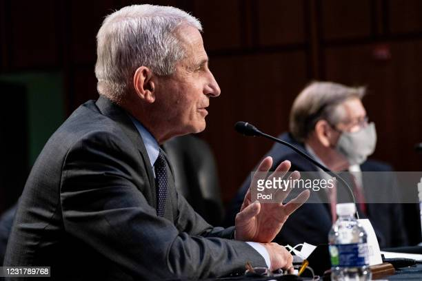 Dr. Anthony Fauci, Director at the National Institute Of Allergy and Infectious Diseases, speaks during a hearing, with the Senate Committee on...