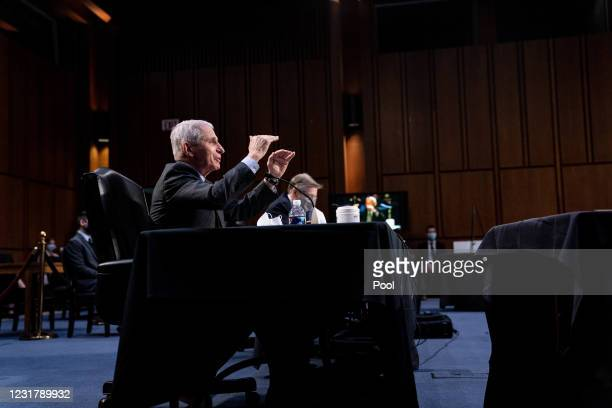 Dr. Anthony Fauci, Director at the National Institute Of Allergy and Infectious Diseases, gestures as he speaks during a hearing, with the Senate...