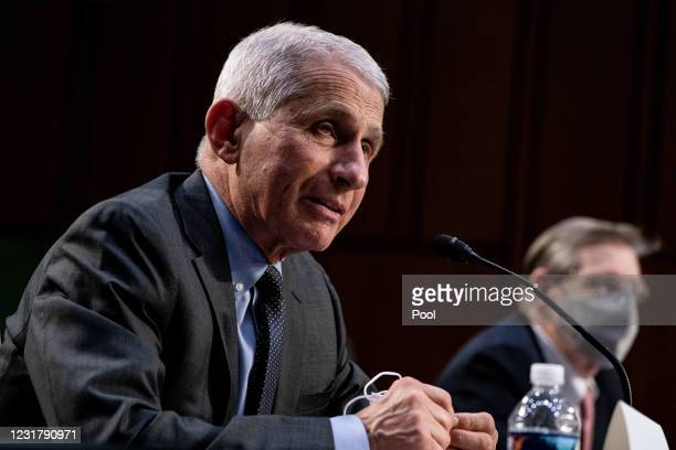 Dr. Anthony Fauci, Director at the National Institute Of Allergy and Infectious Diseases, speaks during a hearing with the Senate Committee on...