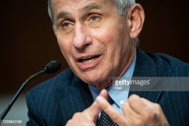 Dr. Anthony Fauci, director of the National Institute of Allergy and Infectious Diseases, speaks during a Senate Health, Education, Labor and...