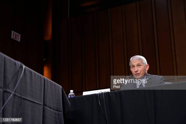 Dr. Anthony Fauci, director of the National Institute of Allergy and Infectious Diseases, testifies during a Senate Health, Education, Labor and...