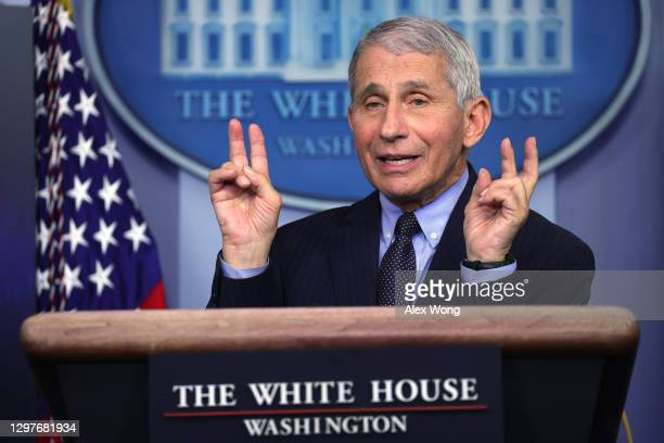 Dr Anthony Fauci, Director of the National Institute of Allergy and Infectious Diseases, speaks during a White House press briefing, conducted by...