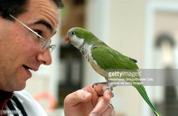 Dr Bill Guerrera DVM looks eye to eye with Joe a Quaker parakeet at the Animal Doctor where he specializes in exotic animals