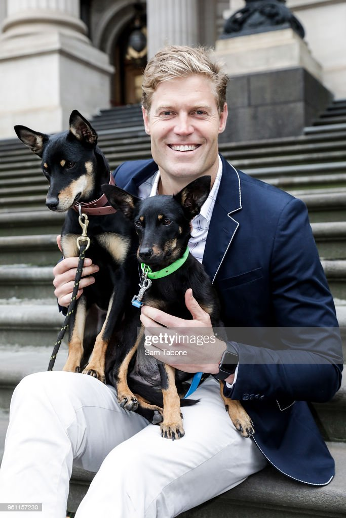 Bondi Vet Chris Brown Launches Pet Positives Hub