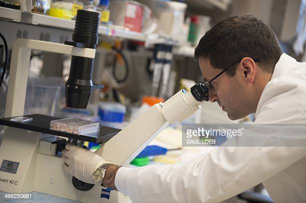 Dr Christian Hinrichs assistant clinical investigator at the Center for Cancer Research at the National Cancer Institute works in his lab where he...