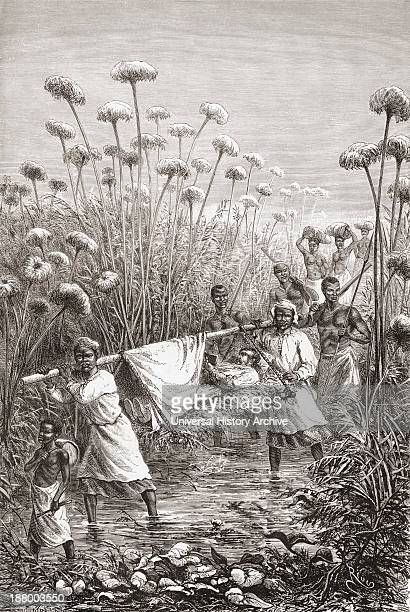 Dr David Livingstone Being Carried The Last Few Miles To The Village Of Tchitammbo Africa Shortly Before His Death David Livingstone 1813 To 1873...