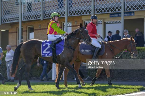 Dr Dee Dee ridden by Alana Kelly returns to scale after winning the Taylor Motors BM58 Handicap at Hamilton Racecourse on April 01 2019 in Hamilton...