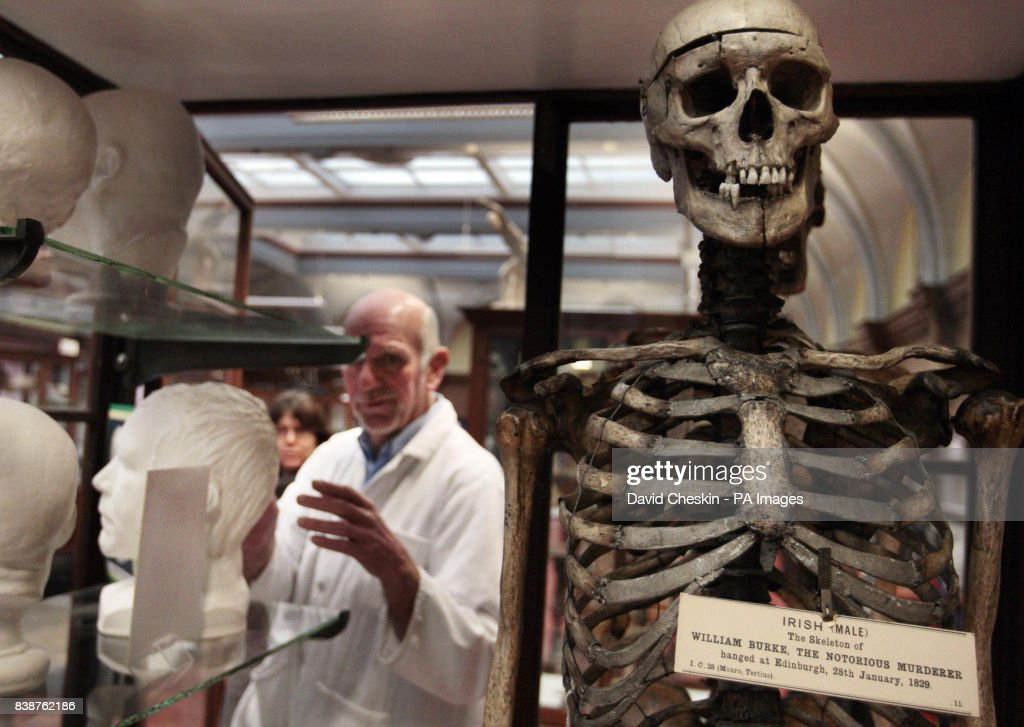 Anatomy Museum Revamp Pictures Getty Images