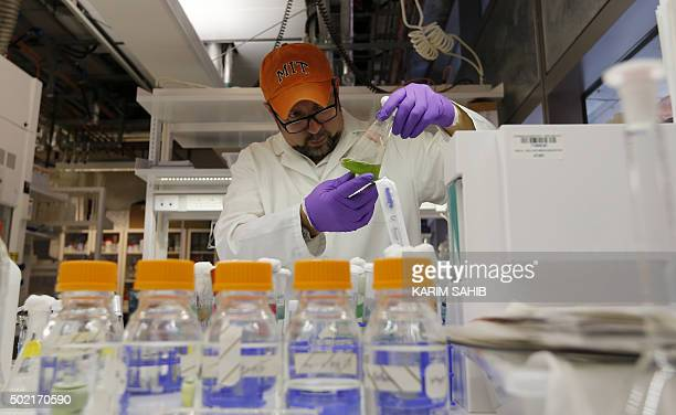 Dr Hector H Hernandez Assistant Professor of Chemical Engineering at Masdar Institute works at a laboratory in Masdar City on the outskirts of the...