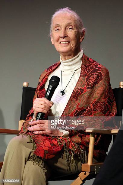 Dr Jane Goodall attends Dr Jane Goodall Alastair Fothergill and Keith Scholey Disneynature's 'Bears' at Apple Store Soho on April 15 2014 in New York...