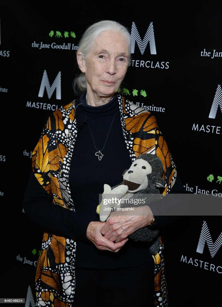 Dr. Jane Goodall attends the 'Dr. Jane Goodall's MasterClass' New York screening at the Whitby Hotel on September 12, 2017 in New York City.