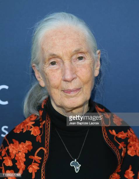 Dr Jane Goodall attends the National Geographic Documentary Films' premiere of Sea of Shadows at NeueHouse Los Angeles on July 10 2019 in Hollywood...