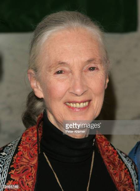 Dr Jane Goodall attends the Wings World Quest 2007 Women of Discovery Awards Gala on March 1 2007 in New York City