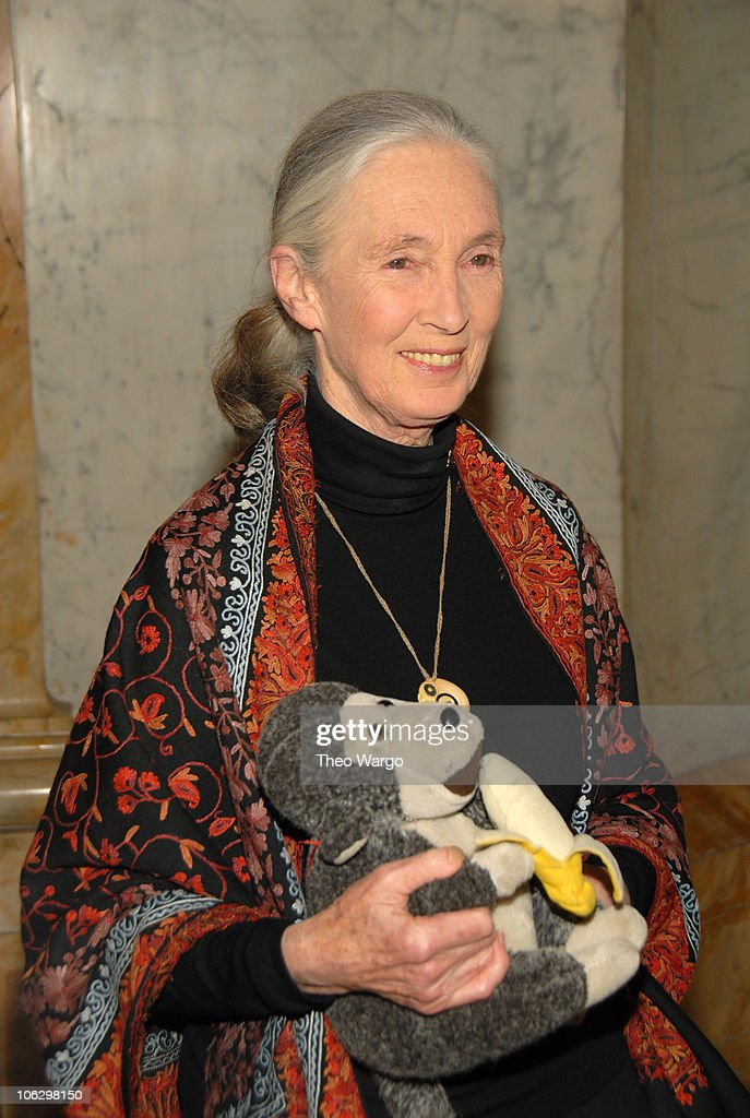 Dr. Jane Goodall during 2007 Wings WorldQuest Woman of Discovery Presentation at Cipriani in New York City, New York, United States.