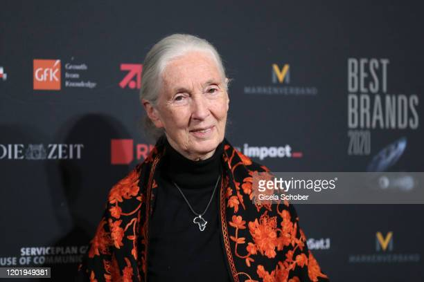 """Dr. Jane Goodall during the """"Best Brands Award 2020"""" at Hotel Bayerischer Hof on February 19, 2020 in Munich, Germany."""