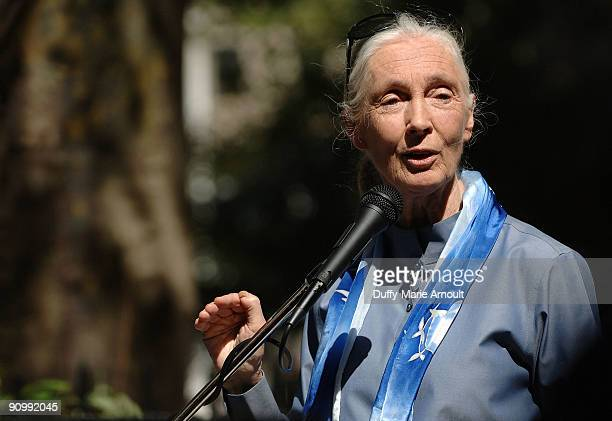 Dr Jane Goodall Founder of the Jane Goodall Institute and a UN Messenger of Peace speaks at Jane Goodall's Roots Shoots International Day of Peace at...