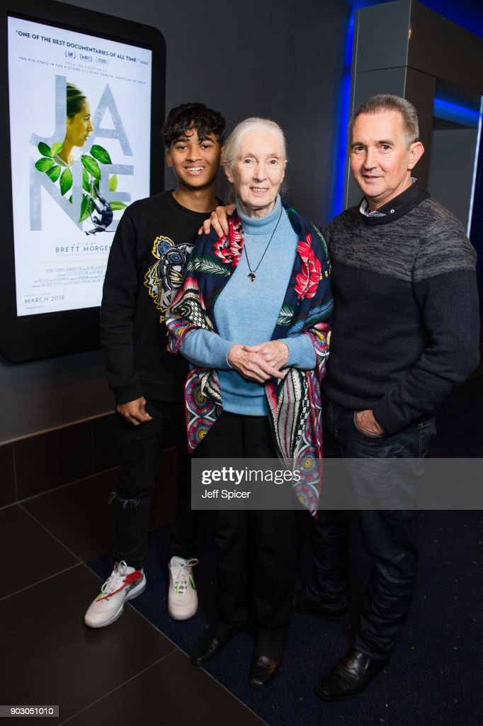 Jane Screening with Dr Jane Goodall in her Hometown of Bournemouth : ニュース写真